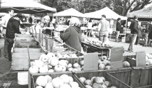 Warwick Farmers Market remains open