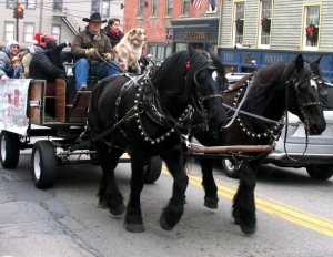 Free horse and buggy rides on Main Street were a big hit. Sean Giery and his team of Percherons, Mabel and The Colonel, were back with their mascot Butch.