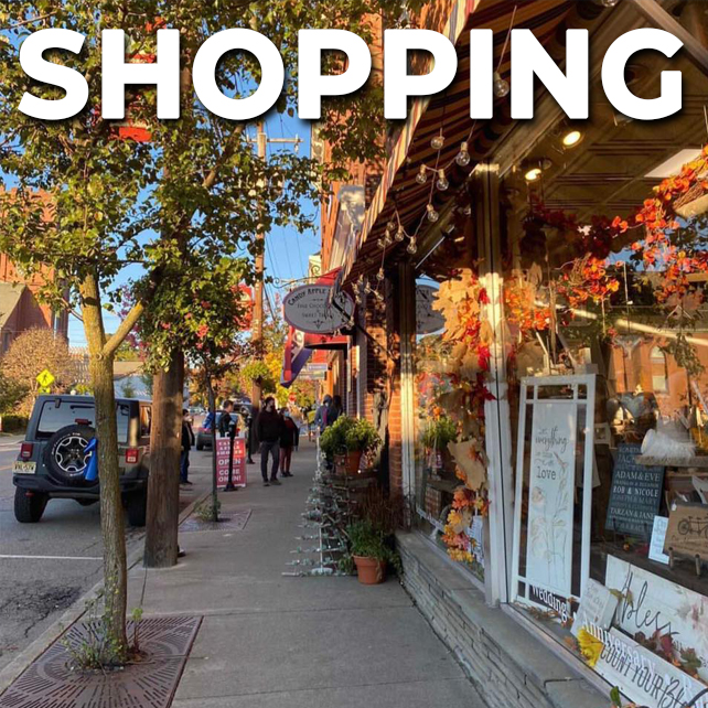 shopping use